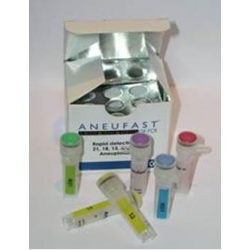 AneufastTM QF-PCR Kit