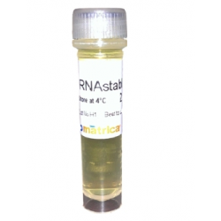 RNAstable® LD 2ml