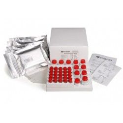 Intact Proinsulin ELISA Kit