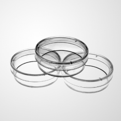 35mm Cell Culture Dish, TC, Sterile 20/pk, 500/cs