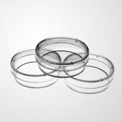 35mm Cell Culture Dish, TC, Sterile 20/pk, 500/cs