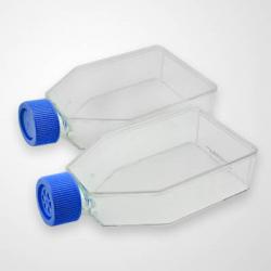 75cm2 Cell Culture Flask, Vent Cap, TC, Sterile 5/pk, 100/cs