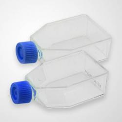 75cm2 Cell Culture Flask, Plug Seal Cap, TC, Sterile 5/pk, 100/cs