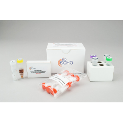 EchoLUTION Blood DNA Kit (10)