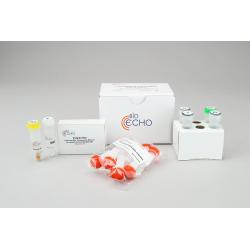 EchoLUTION Cell Culture DNA Kit (10)