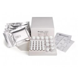 Total Proinsulin ELISA kit