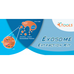 TOOLSharp Cell Culture Media Exosome Extraction Kit