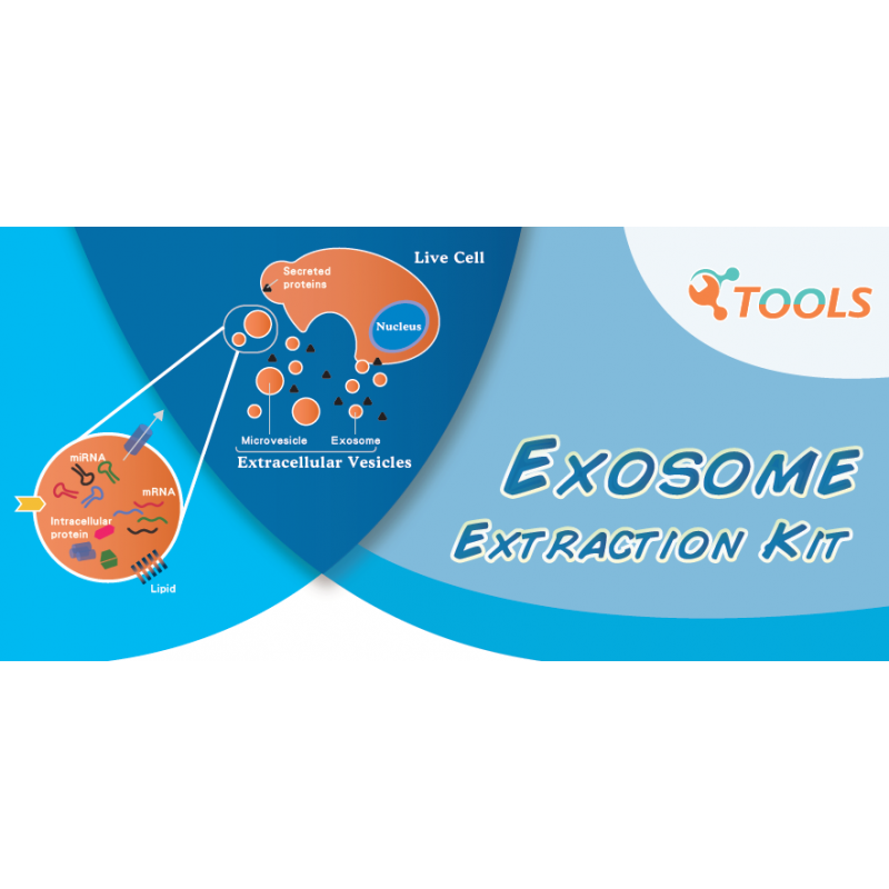 TOOLSharp Serum Exosome Extraction Kit
