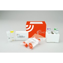 EchoLUTION Plant DNA Kit (10)