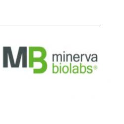 ExtractNow™ Virus RNA Swab Kit