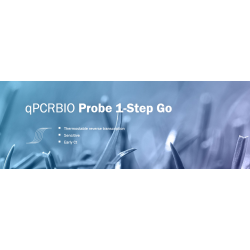 qPCR Probe 1-Step Go No-ROX