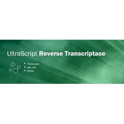 UltraScript Reverse Transcriptase