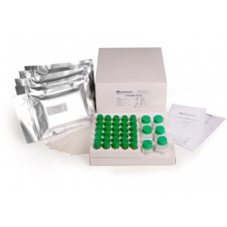C-Peptide Luminescence Assay Kit