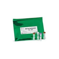 MB Taq DNA Polymerase, Hot-Start