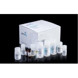 genesig Easy DNA/RNA Extraction Kit