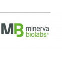 Mycoplasma-Off® Wipes refill